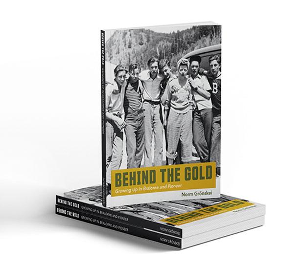 Sanserofin Book Cover Design Portfolio - Behind the Gold
